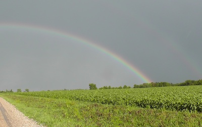 Rainbow Knox County IL
