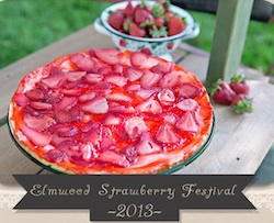 Elmwood Strawberry Festival IL 2013